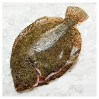 Waitrose Entertaining Whole Brill