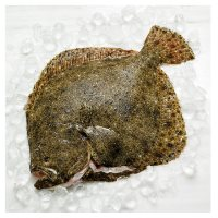Waitrose Entertaining Whole Turbot