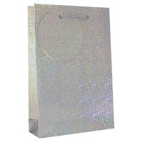 Holographic DVD gift bag