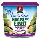 Quaker Oats So Simple Heaps of Fruit blackberry & apple porridge cereal pot - 58g