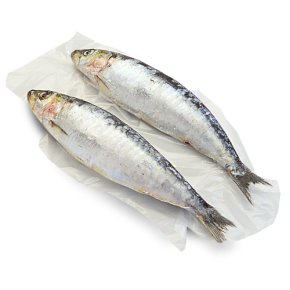 Waitrose MSC Cornish sardines
