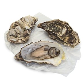 Waitrose 1 fresh Scottish oyster