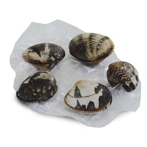 Waitrose 1 fresh New Zealand littleneck clams