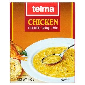 Kosher Telma chicken noodle soup mix