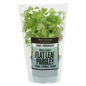 Cooks' Ingredients Flat Parsley