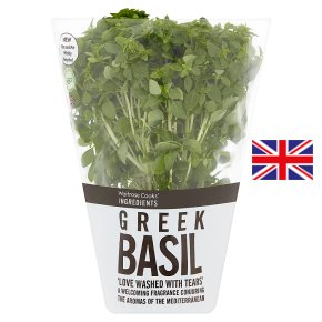 Cooks' Ingredient Greek Basil