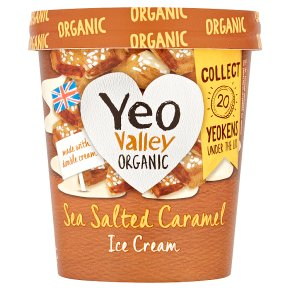 Yeo Valley Organic Ice Cream Sea Salted Caramel