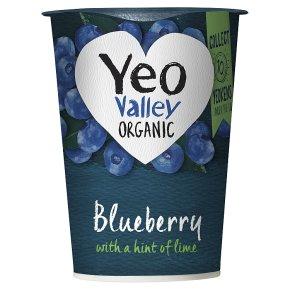 Yeo Valley organic blueberry yogurt