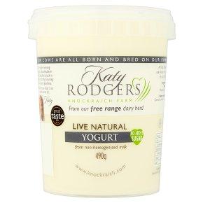 Katy Rodgers natural yogurt
