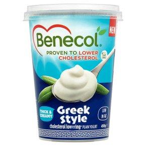 Benecol Greek Style Big Pot Yogurt