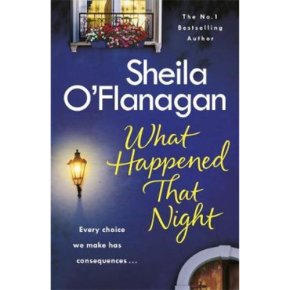 What Happened That Night Sheila O'Flanagan