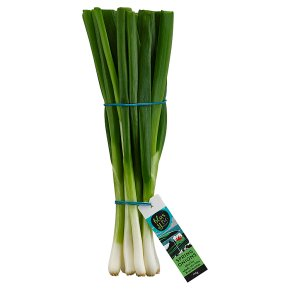 blas y tir spring onions