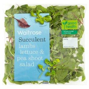 Waitrose Lambs Lettuce & Pea Shoot Salad