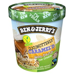 Ben & Jerry's Coconutterly Caramel Non Dairy