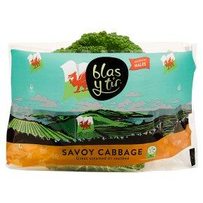 Blas Y Tir Savoy Cabbage