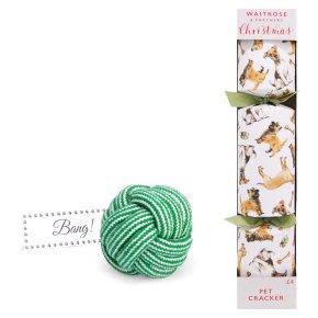 Waitrose Christmas Cracker For Your Dog